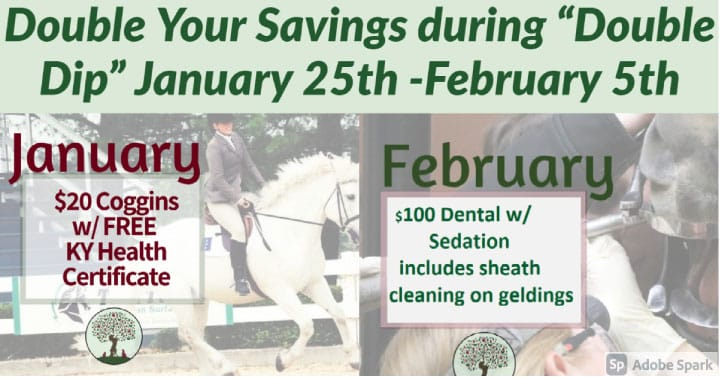 """Double Your Savings During """"Double Dip"""" 